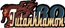 Tutankhamon80-logo